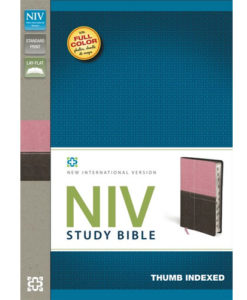 NIV Study Bible | Thumb – Indexed