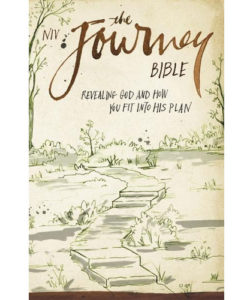 NIV The Journey Bible