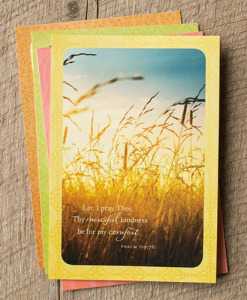 Sympathy | Serenity | 12 Boxed Cards