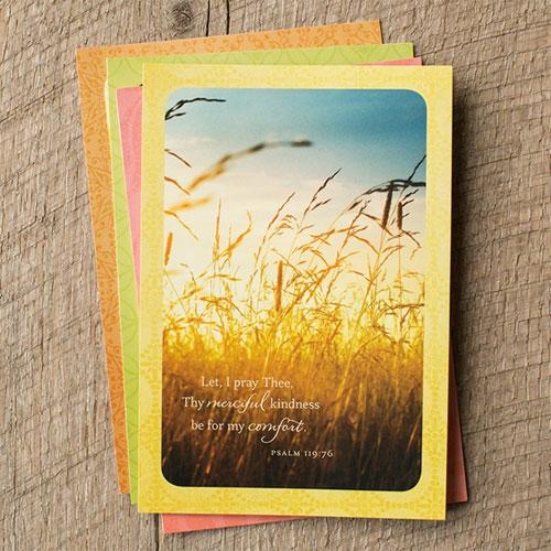 Sympathy | Serenity | 12 Boxed Cards