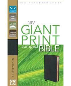 NIV Compact Bible Giant Print