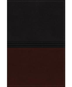NIV The MacArthur Study Bible