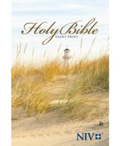 NIV Holy Bible   Giant Print