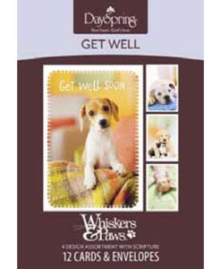 Get Well | Whiskers & Paws | Surrounded in Prayer | 12 Boxed Cards