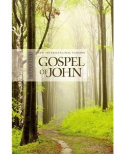 NIV   The Story of God Gospel of John   Large Print