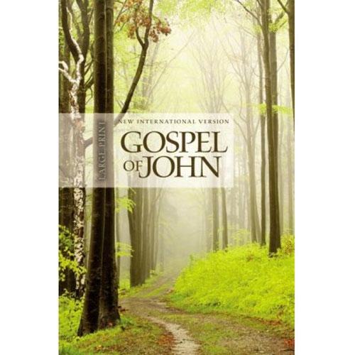 NIV | The Story of God Gospel of John | Large Print