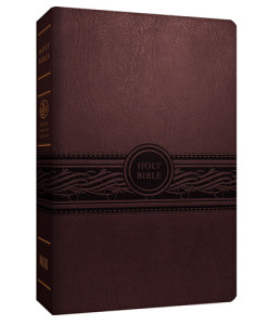 MEV Personal Size Large Print Reference Bible