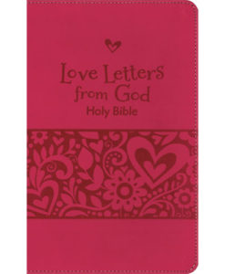 NIrV Love Letters from God Holy Bible