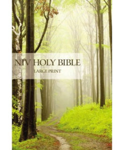 NIV | Holy Bible | Large Print