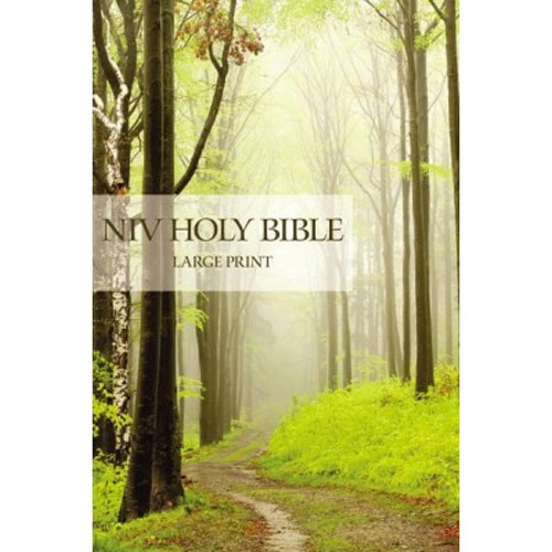 NIV | Holy Bible | Large Print