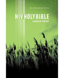 NIV | New Testament | Large Print