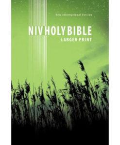 NIV   New Testament   Large Print