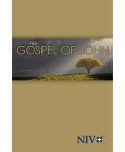 NIV | Gospel of John | Large Print