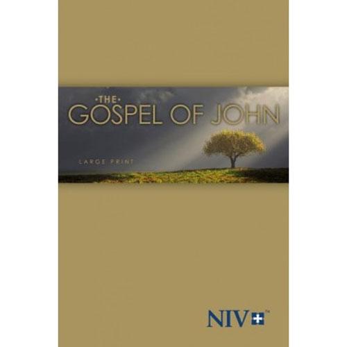 NIV | Gospel of John | Large Print