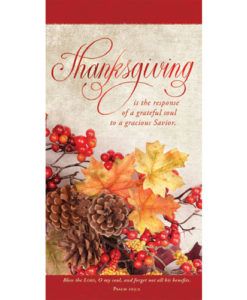 Thanksgiving Is The Response Thanksgiving 2017 | Offering Envelope Package of 100
