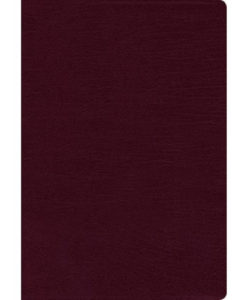 NIV Thinline Bible Comfort Print | Large Print | Indexed | Red Letter