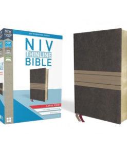NIV Thinline Bible Comfort Print | Large Print | Red Letter