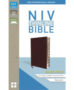 NIV Thinline Bible Comfort Print | Giant Print | Indexed | Red Letter