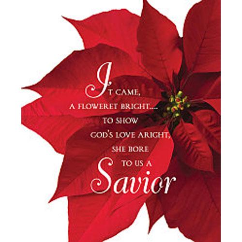 Savior Poinsettia Christmas 2018 Bulletin