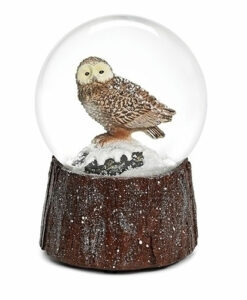 Musical Owl in Snow Glitter Dome