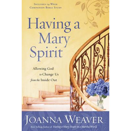 Having A Mary Spirit: Having A Mary Spirit