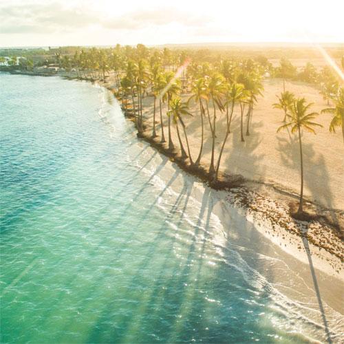 Island Paradise 2.5 oz Odor Eliminating Melts